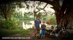 Cycling, Wordpress, Bicycle, World, Check, Design, The World, Bicycle Kick, Bicycling