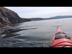 August 26, 2015: San Juan Islands, WA- Heading out of Roche Harbor into Open Bay to circle Henry Island. One kayak(me + guide) head out at 9:00 am. Ended up ...