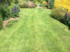 Lawncare treatments, Great Bourton, Oxfordshire Lawn Care, Golf Courses, Sidewalk, Outdoor Decor, Green, Lawn Maintenance, Side Walkway, Walkway