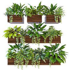 3D Plant Model - 3D Model