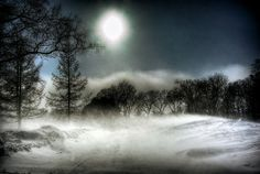 Pictures of Winter Storms | Winnipeg Winter Storm | Flickr - Photo Sharing!