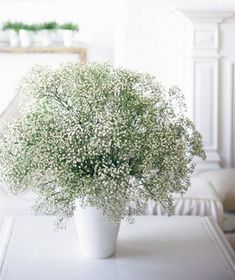 The Simplest Bouquet:  Long considered mere filler (and unwanted filler, at that), baby's breath is strikingly lovely on its own when gathered in a large, airy bunch. Sold at most florist shops, it's inexpensive and neutral enough to work in any setting. Drop a generous handful into a tall ceramic or glass vase.