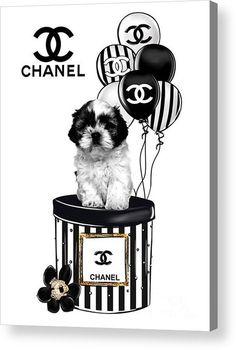 Chanel Dog And Ballon Acrylic Print by Wanda Skeens
