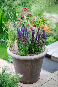 Pot for June colour: This pot is bright and wild life friendly with centranthus, achillea, salvia, linaria, hordeum grass and geum to please butterflies and bees. For more on wild life friendly plants visit our website http://www.gardenersworld.com/plants/features/wildlife/wildlife-friendly-plants/1127.html Photo by Jason Ingram
