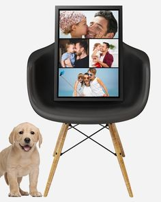 All Frames handcrafted with Passion + Highest level of museum-quality CANVAS. Camera Frame, Great Photographers, Custom Canvas, Photo Canvas, Program Design, Digital Camera, Backdrops, Photo Editing, Art Gallery