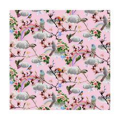 Bomuldsjersey - fotoprintet med fugle og regnbue