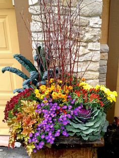 Gardening Autumn - www. - With the arrival of rains and falling temperatures autumn is a perfect opportunity to make new plantations Plants, Planters, Fall Flowers, Container Gardening Flowers, Container Flowers, Flower Garden, Fall Plants, Garden Design, Garden Pots