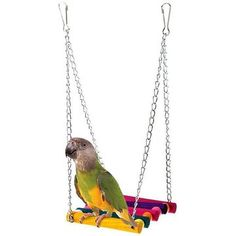 Bird Toys Shop For Cheap 1pcs Colorful Wooden Parrot String Bite Bird Toy For Parrots Hanging Bridge String With Bells Swing Colorful Parrot Toys Wood Neither Too Hard Nor Too Soft