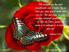 Los ojos del Señor están sobre los justos...Gálatas 2:20