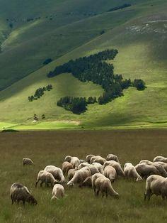Pian Grande, Castelluccio di Norcia, Monti Sibillini, Italy Per me uno dei più bei luoghi al mondo!