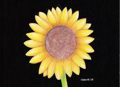 sun flower #colour #pencil #sketch