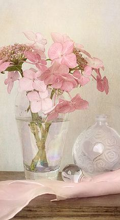 Raindrops and Roses Peonies And Hydrangeas, Pink Peonies, Pink Roses, Pink Flowers, Hortensia Hydrangea, Pink Hydrangea, Very Beautiful Flowers, Pretty In Pink, Beautiful Bouquets