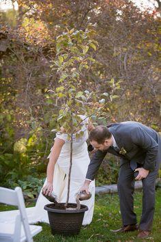 Apple Tree Planting Unity Ceremony