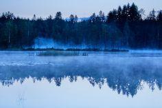 Dimmor och nät... - http://www.wildlifephotographer.se/blog/2016/08/dimmor-och-nat/ #Dagg, #Dimma, #Gryning, #Korså, #Sommar, #Spindelnät Wildlifephotographer.se | Leif Bength
