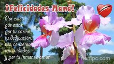 ¡Felicidades Mamá! Por existir, por estar, por tu cariño, tu dedicación, tus consejos, cuidados y por tu inmenso amor