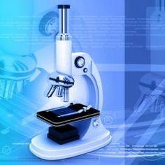 science advances impact factor