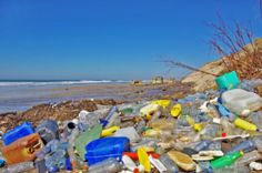 European bioplastics: Biodegradable plastics were never designed to be a solution to marine litter. You could say this article is a marketing spin. T: Pollution, Sustainable packaging