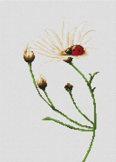 This nature-infused cross stitch kit by Luca-S extends a plant stem, revealing a single, sitting ladybird atop its lone open flower. Combining a mini...