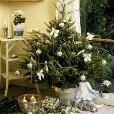 Xmas, Table Decorations, Plants, Home Decor, Yule, Homemade Home Decor, Flora, Christmas Movies, Plant