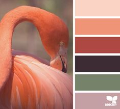 A vibrant orange/red softened by the lighter tints in this primarily, monochromatic colour palette.