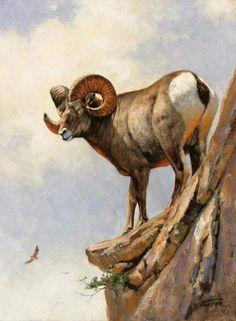 Eric forlee, 1949 out of africa eric forlee sheep paintings, Sheep Paintings, Wildlife Paintings, Wildlife Art, Animal Paintings, Elk Drawing, Sheep Drawing, Animal Totems, Animal Sculptures, Big Horn Sheep