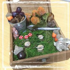 【dachiwa】さんのInstagramをピンしています。 《ずっと前に、途中まで作ってた#リングピロー を完成させました!森がテーマなのと、秋なので、キノコやどんぐり、うさぎさんにリスさんなどなど盛りだくさんになりました∑(゚Д゚) でも、指輪が目立たなくなった? どうでしょう? #花嫁diy #ちーむ1030 #日本中のプレ花嫁さんと繋がりたい #ワーキング花嫁 #2016秋婚 #森 #100均diy #100均 #リングピロー手作り》