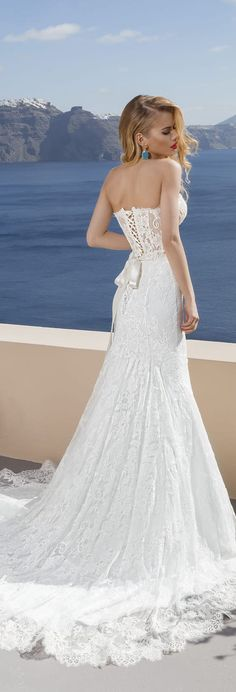 Lanesta Bridal -Story of the Rose Collection - Best Wedding Gowns Country Wedding Dresses, Bridal Dresses, Wedding Gowns, Bridesmaid Dresses, Gorgeous Wedding Dress, Beautiful Bride, Beautiful Dresses, Festa Party, Bridal Collection