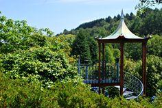 Jardines de la Fonte Baxa | The Wandering S http://thewanderingsblog.com/2014/06/23/jardines-fonte-baxa/
