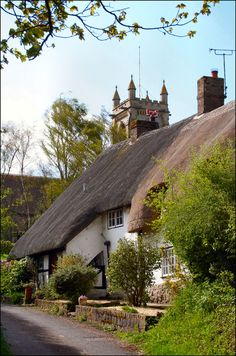 Thatch: West Overton | by Canis Major