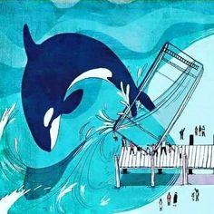Orcas Seaworld, Whale Art, Killer Whales, Sea World, Dolphins, Mammals, Batman, Superhero, Wallpaper