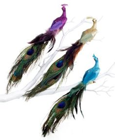 Holiday Lane Set of 3 Peacock Bird Ornaments