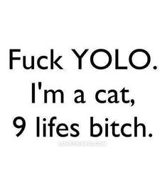 Fuck YOLO funny quote cat smile bitch laugh funny quotes teen teen quotes fuck yolo