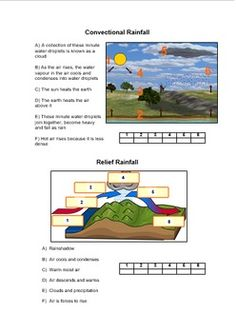 These documents include worksheets tailored to higher and lower abilities to understand why it rains and the different types of rainfall Types Of Rainfall, Weather And Climate, Teacher Pay Teachers, Teacher Newsletter, Teaching Resources, Middle School, Worksheets, Homeschool, Mind Maps