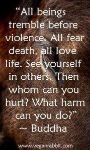 Tutte le creature tremano di fronte alla violenza. Tutte temono la morte, tutte amano la vita. Vediti negli altri. E a quel punto a chi potrai far male? Che male potrai mai fare?    - Buddha