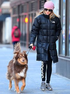 Amanda Seyfried kept a low profile with a beanie hat, puffer jacket and oversized sunnies as she took her puppy pal for a walk through the Big Apple!