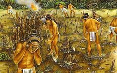 Mayans used two methods of agriculture. They planted on raised beds above swamps, and hillside terraces. Also, they used slash and burn method, (clearing land, burning it, and planting in the ashes.) They mainly planted maize, beans, and squash.