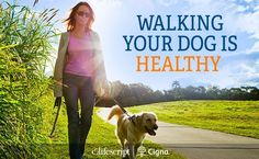 Everyday Health: Trusted Medical Information, Expert Health Advice, News, Tools, and Resources Pet Health, Health Care, Health Fitness, Healthy Style, Dog Care Tips, Medical Information, Healthy Lifestyle Tips, Health Advice, Health And Wellbeing
