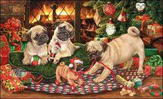 Christmas with pugs.
