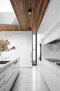 a sleek minimalist white space is accented with a wood slab ceiling and a large skylight for a natural feel