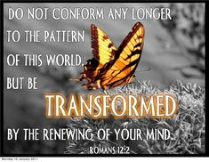 Amen♡ transformation ❤️❤️❤️