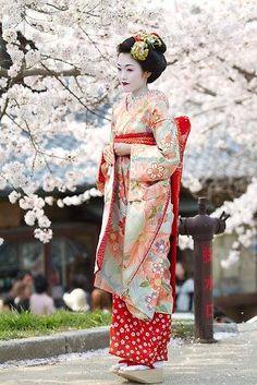 Mulher japonesa e flores de cerejeira