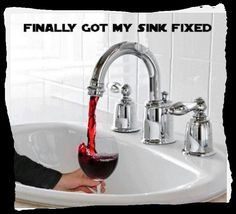 Wine Humor: Sink or Swim? Pour the wine! I really want to sink....