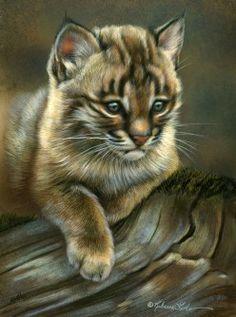 "Quiet Spot - Bobcat Kitten, 5"" x 7"", watercolor on board, ©Rebecca Latham - The Snowgoose Gallery The Art of the Miniature XXIII"
