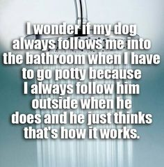Ahahaha! Good theory, but that doesn't explain why the cat does it as well. I don't follow her to the litter box.