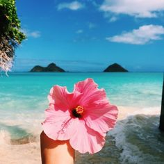 """Find and save images from the """"My Year in Hearts - collection by ✲Endless.Summer✲ (endless_summer_paradise) on We Heart It, your everyday app to get lost in what you love. Summer Of Love, Summer Fun, Pink Summer, Summer Vibes, The Beach, Sunset Beach, Pink Beach, Pink Sand, Beach Waves"""