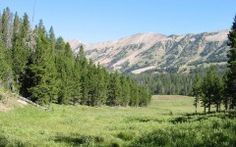 Gallatin National Forest Photo