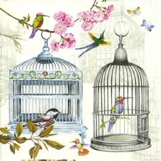 4 x Single Luxury Paper Napkins for Decoupage and Craft Vintage Birdcages