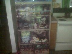 Gory fridge
