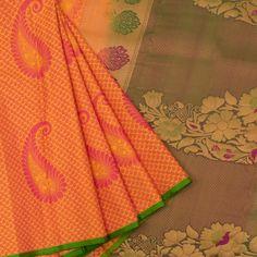 Buy online Pure Silk Jacquard Kanjivaram Saree With Paisley Motifs & Peacock Pallu Kanjivaram Sarees, Kanchipuram Saree, Indian Silk Sarees, Pure Silk Sarees, Wedding Silk Saree, Elegant Saree, Saree Collection, Blouse Designs, Paisley