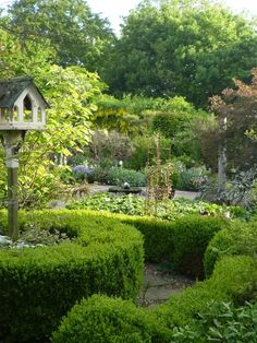 Finding a place for our friend's with wings. NGS Gardens open for charity - Garden